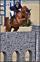 Mickey Hayden Show Jumping At The Nellie Gail Equestrian
